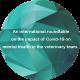 International roundtable report icon