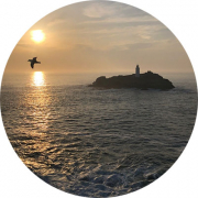 Ben Pococks photo of a Fulmar over the sun setting sea